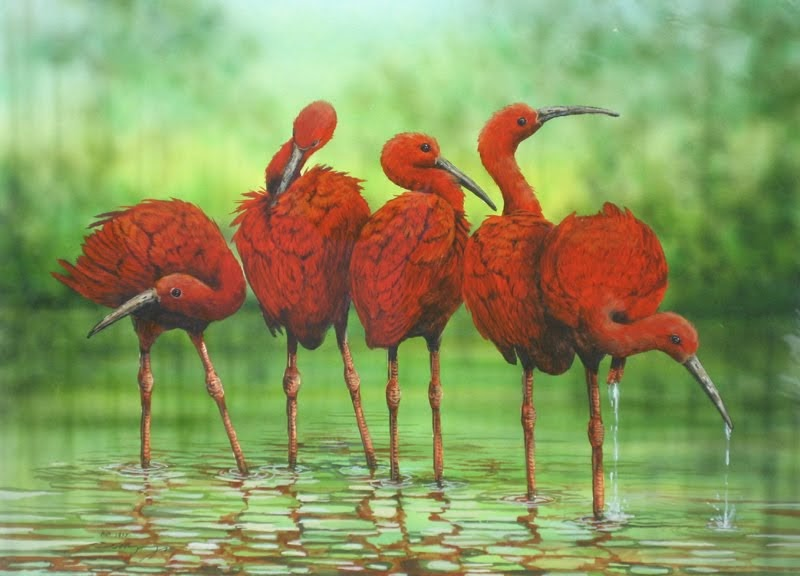 """""""t""""the scarlet ibis"""" by james hursthe Struggling with james hurst's the scarlet ibis check out our thorough summary and analysis of this literary masterpiece."""