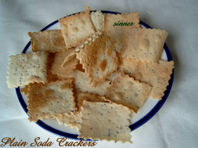 plain soda cracker