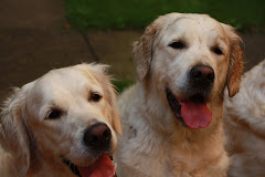 Gracie & Ela