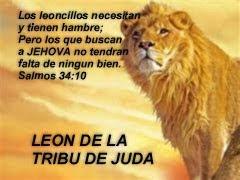"GRACIAS JESUS PORQUE TU PROTEGES A TUS HIJOS!  ""OREMOS"""