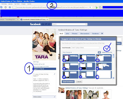 Facebook Hayran Sayfaları