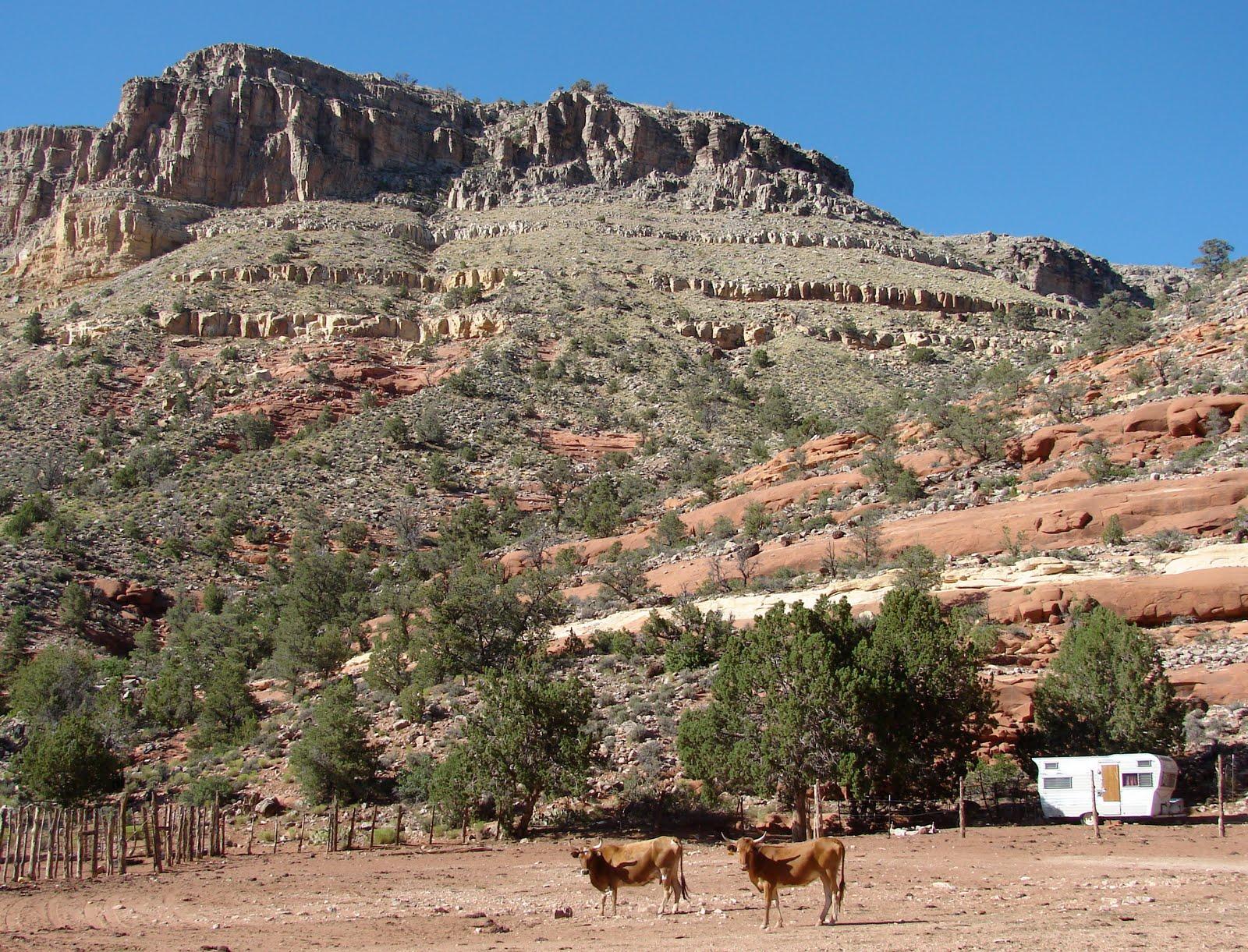 Our Four Wheel Camper Return To The Arizona Strip Pt 2