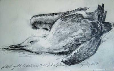 dead gull graphite in moleskine sketchbook