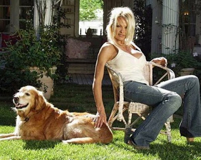 Pamela Anderson Is a Dog Saver Seen On www.coolpicturegallery.us