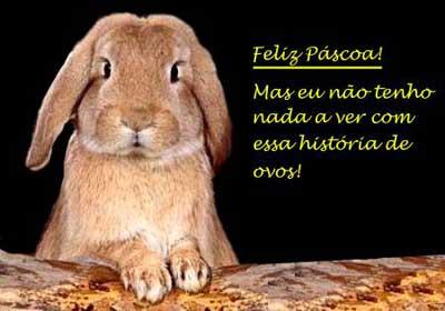 http://2.bp.blogspot.com/_Zf0zTvj89uY/S7X6qigQBnI/AAAAAAAACLg/TlkFpnsg5Wk/s1600/coelho_feliz_pascoa_WEB.jpg