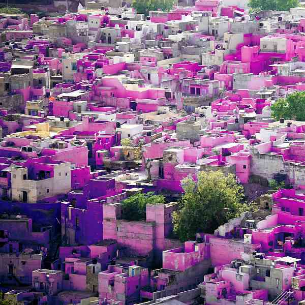 lets_color_project_Jodhpur pink