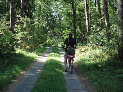 Usedom forest cycle
