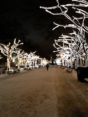 Unter den Linden snow trees lights