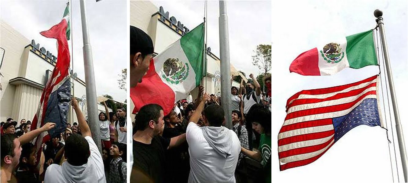 illegals us flag