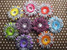 Zebra Print Flowers