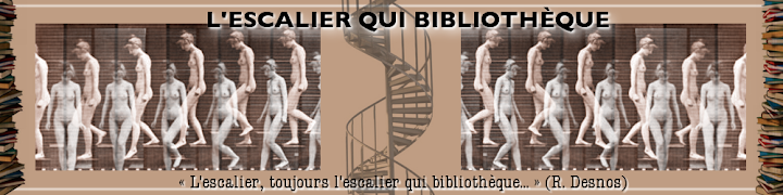 L&#39;escalier qui bibliothque