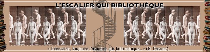 L'escalier qui bibliothèque