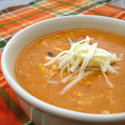 Chicken Enchilada Soup and My Top 10 Soup Recipes | Real ...