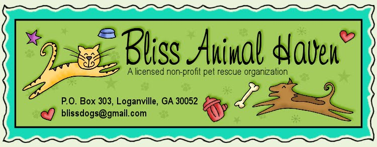 Bliss Animal Haven, Inc.