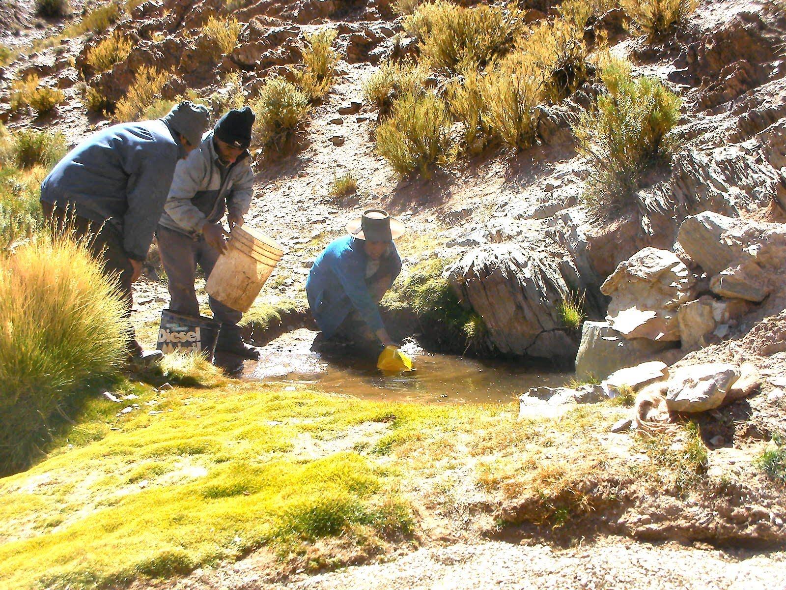 Proyecto pastos chicos busqueda de agua libre de arsenico for Buscador de agua