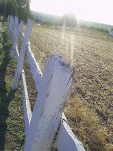 frontera al campo