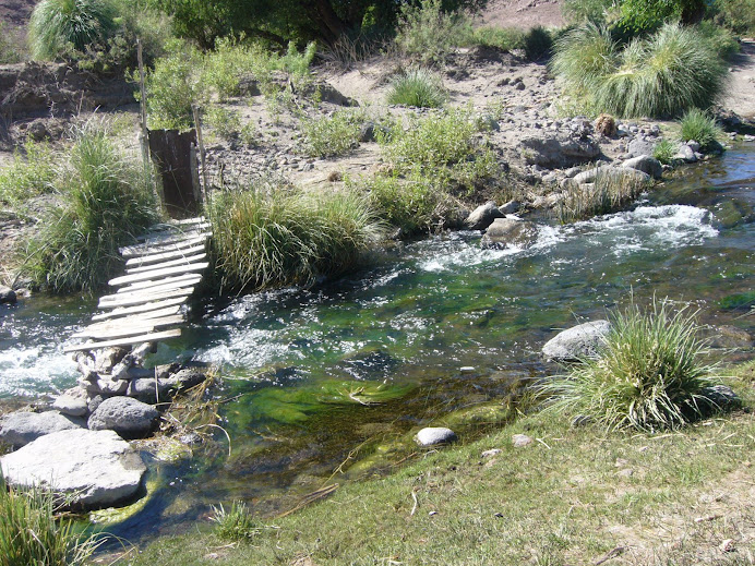 Una de las nacientes del arroyo Valcheta