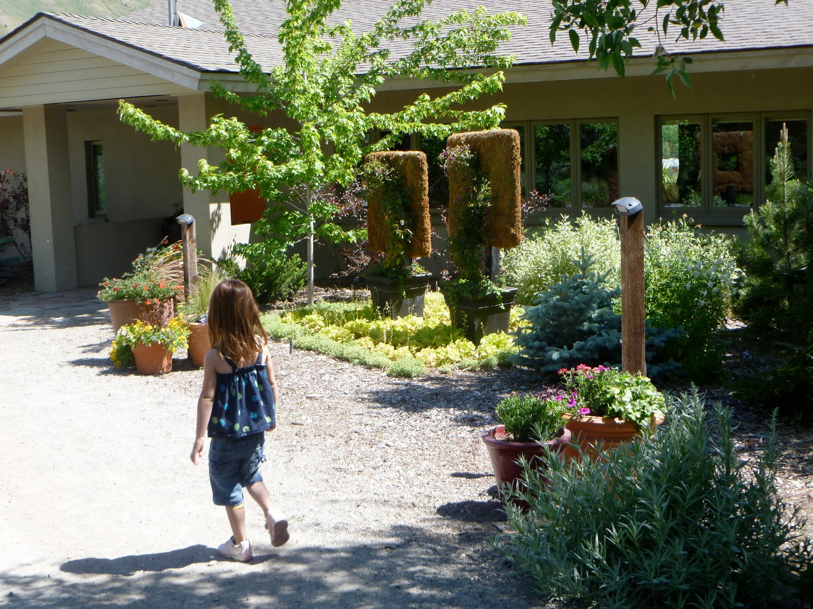 All Summer Long, The Kids Have Been Begging Me To Take Them To The Sawtooth  Botanical Garden (mid Valley, Off Of 75). I Had Forgotten That An Afternoon  At ...