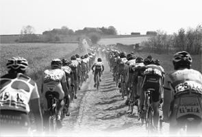 Coureurs sur les pavés de Paris-Roubaix