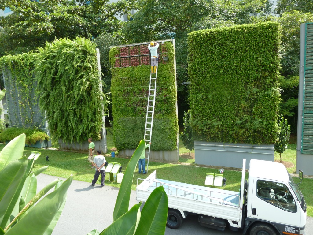 Singapore green roofs and green walls singapore green for Bajo con jardin majadahonda