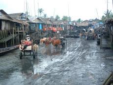 ေက်ာက္ၿဖဴ-ဂ်ပန္မဆိပ္က ကားတိ