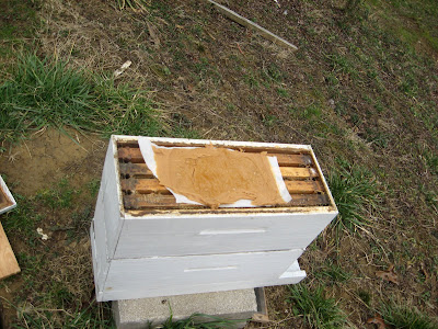 Pollen Box Plans http://wvbeekeeper.blogspot.com/2008/02/building-up-overwintered-nuc-part-1.html