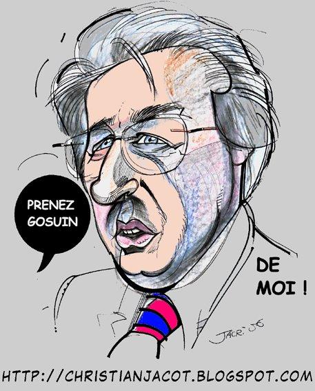 Didier Gosuin