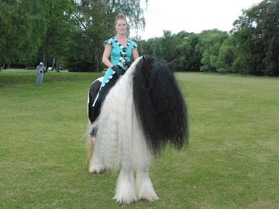 Disse smukke heste og ryttere var mødt op for at give opvisning