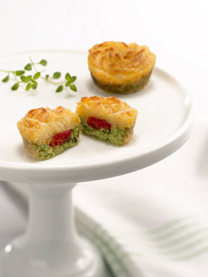 Premier bride magazine texas top 10 hors d oeuvres for 2010