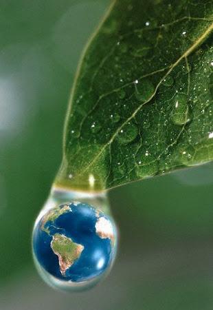O Fragio Equilibrio do Planeta