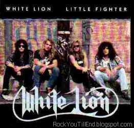White lion little fighter