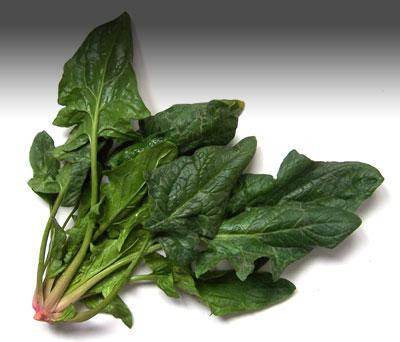 spinach anti aging food
