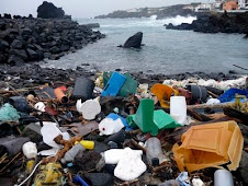 Plastic Polution is Deadly