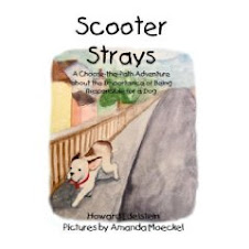 Scooter Strays