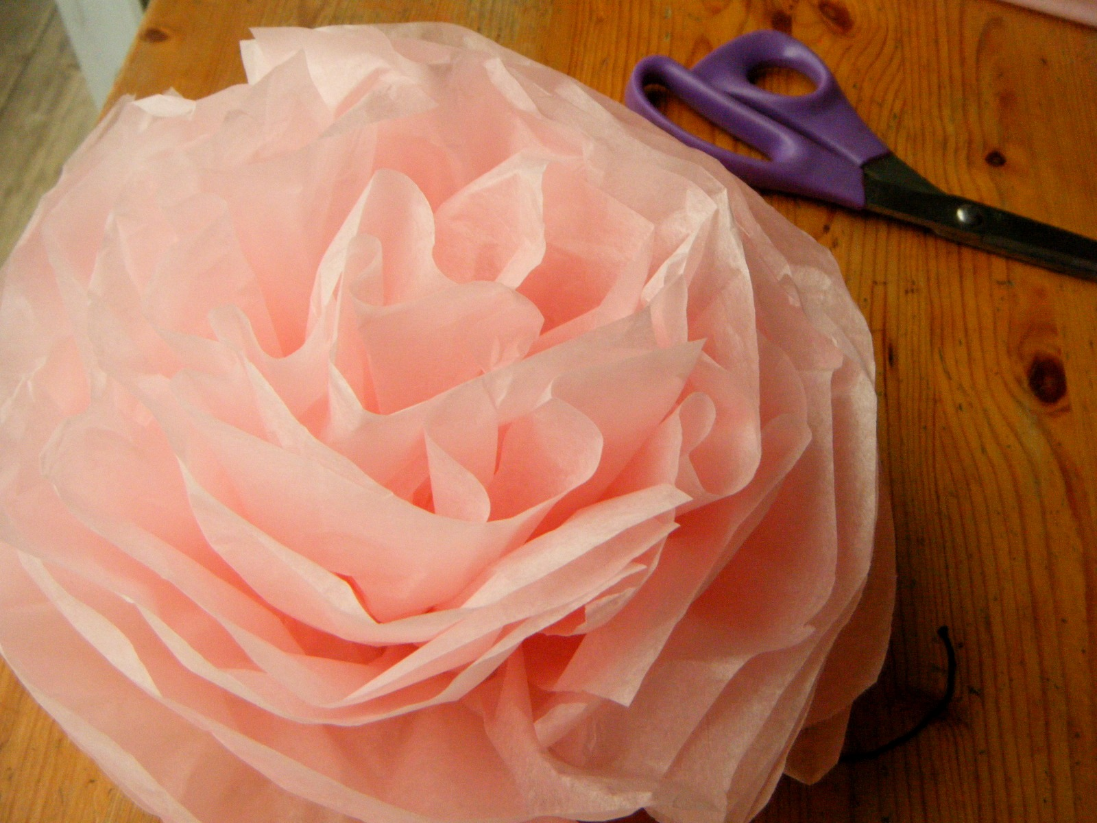 What About Pie February Rain And Tissue Paper Flowers