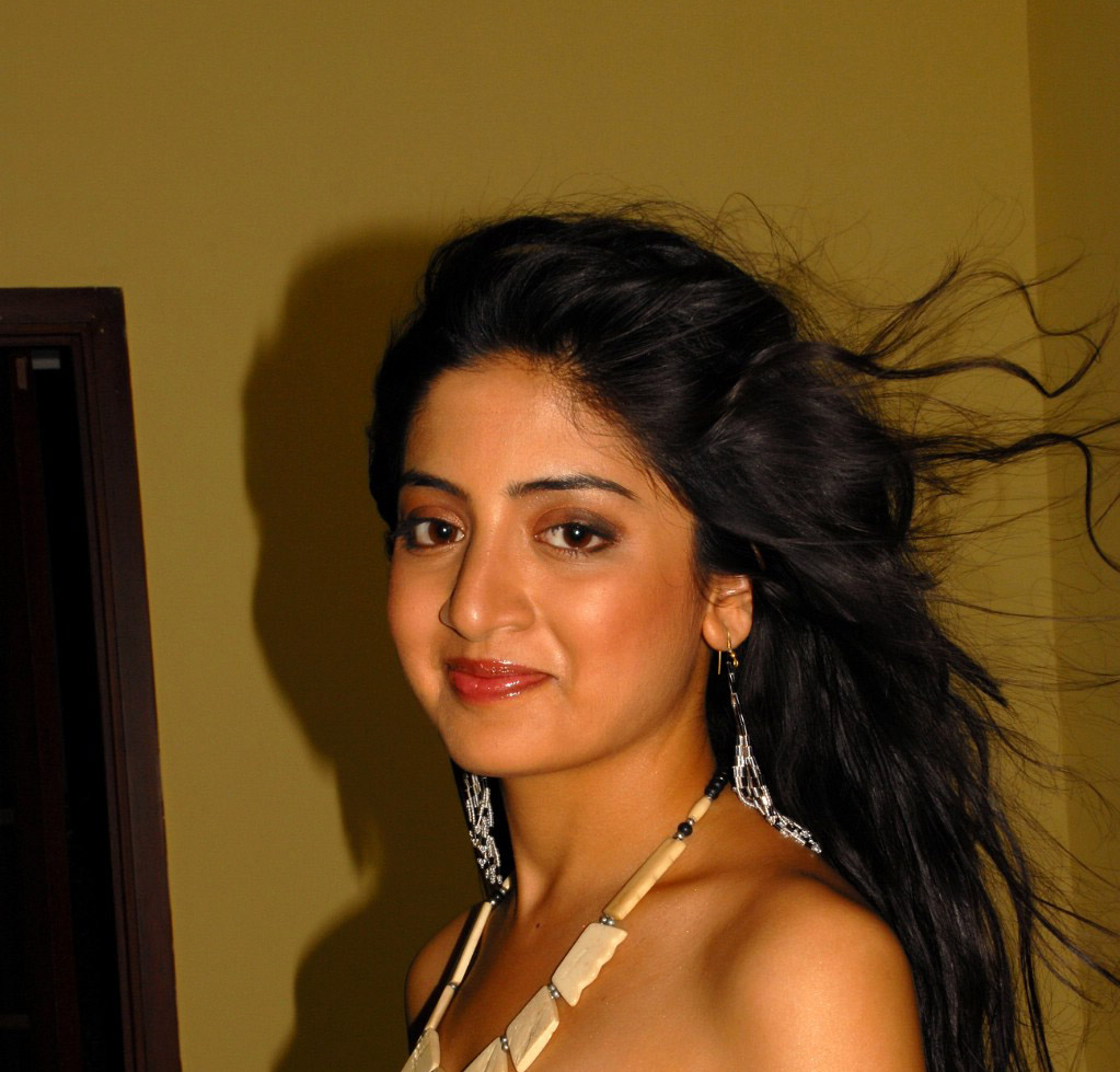South Indian Actress Gallery: South Indian Actress Gallery