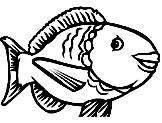 Peixinho Animado