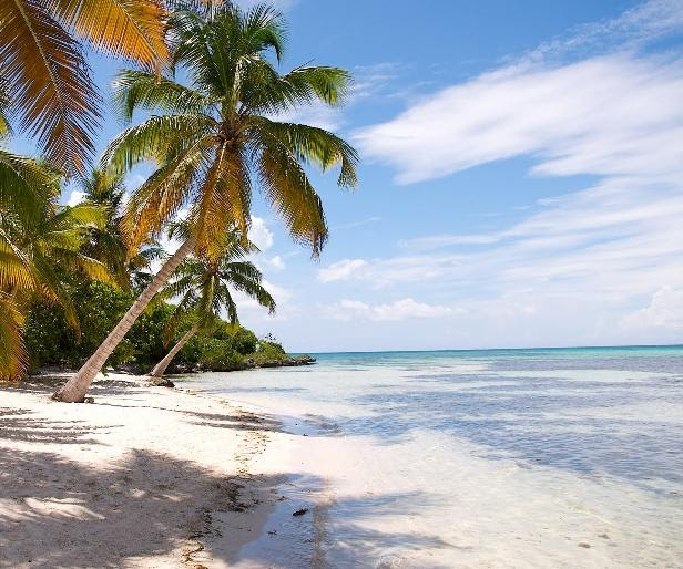 Florida Beach Hotel Vacations