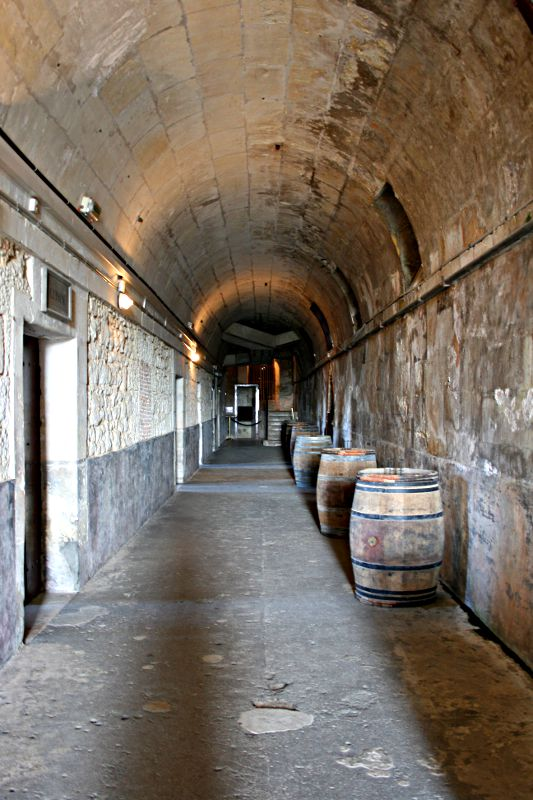 corridor in cellar with wine barrels