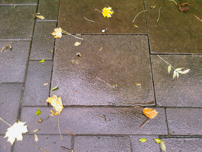 PAVING SQUARE WITH LEAVES
