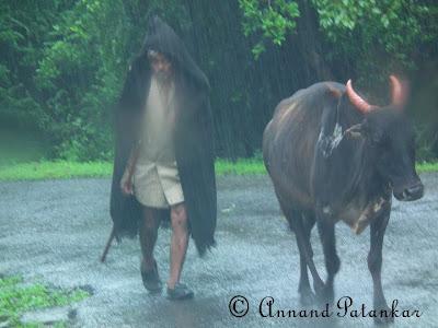 Bullworker © AnnandP