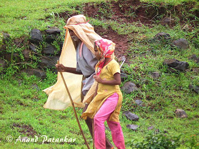 Satara-Kas-People1 © Anand Patankar