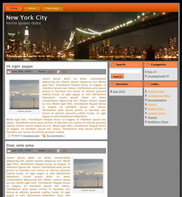 new york city wordpress theme
