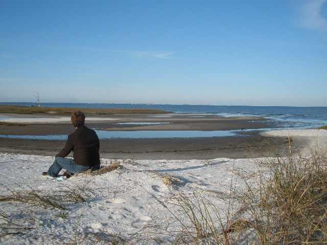 Gulf Coast in February
