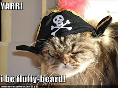 The 2nd Official Captain Crab's High Seas Adventures Cat