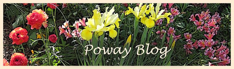 Poway Blog