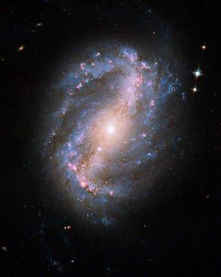 Fotografia datează din 8 iulie 2009 şi arată, în toată splendoarea ei, galaxia spiralată NGC 6217