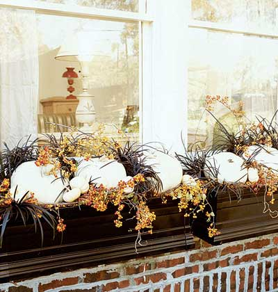 Just so lovely fall window box inspiration for Autumn window decoration
