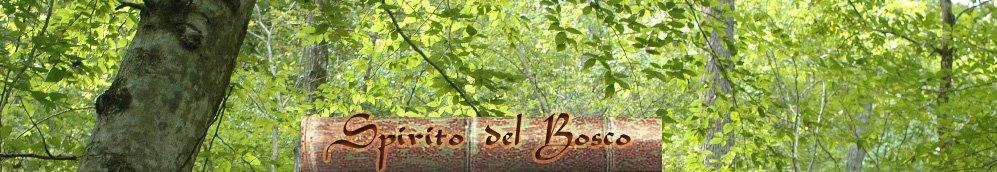 Spirito del Bosco