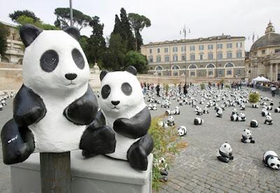 http://2.bp.blogspot.com/__48kWf26fMc/Se7dgOA53jI/AAAAAAAAALw/UA3OeM6YUzI/s400/pandas-1.jpg